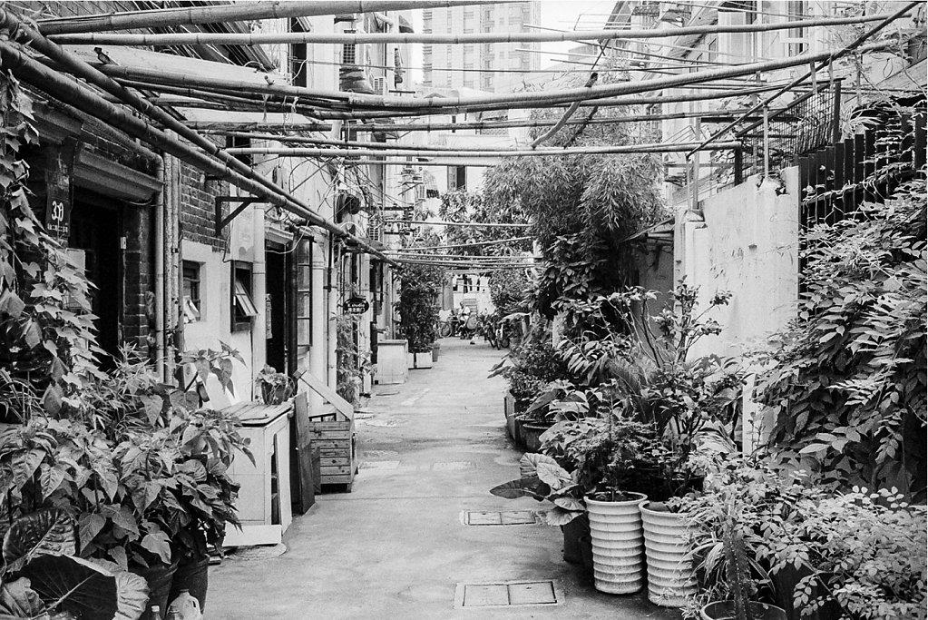 Shanghai-411.jpg